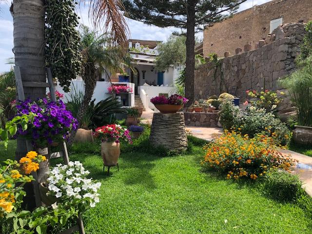 Jardin sur l'île de Panarea