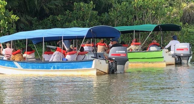 Promenade en bateau à la rencontre des singes sur le lac Gatun